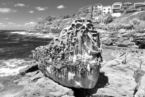 scultpure-by-the-sea_sydney_2013_traffic-magazine_Margarita-Sampson