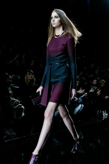 elie-saab_fall-winter2014_traffic-magazine_1
