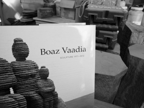 Boaz-Vadia_studio-creation_brooklyn_traffic-magazine_2